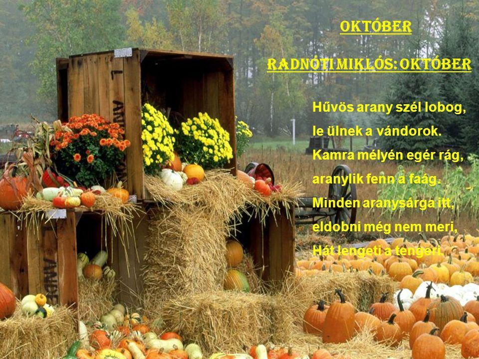 Radnóti Miklós: Október