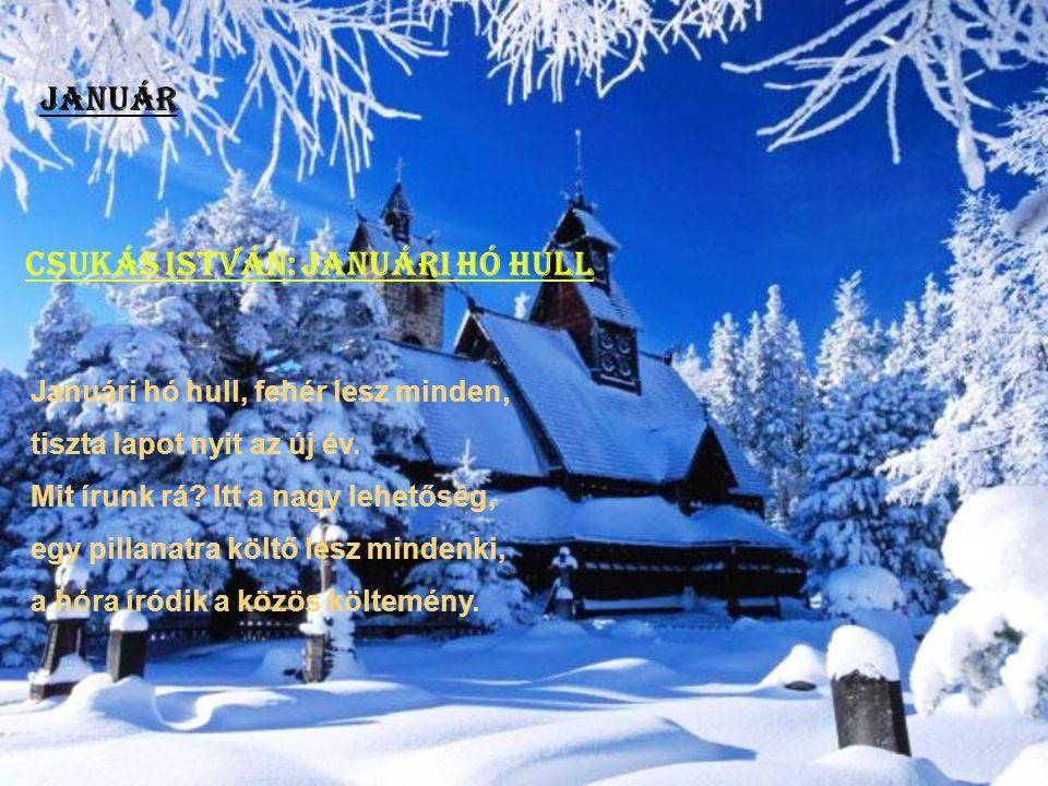 Csukás István: Januári hó hull