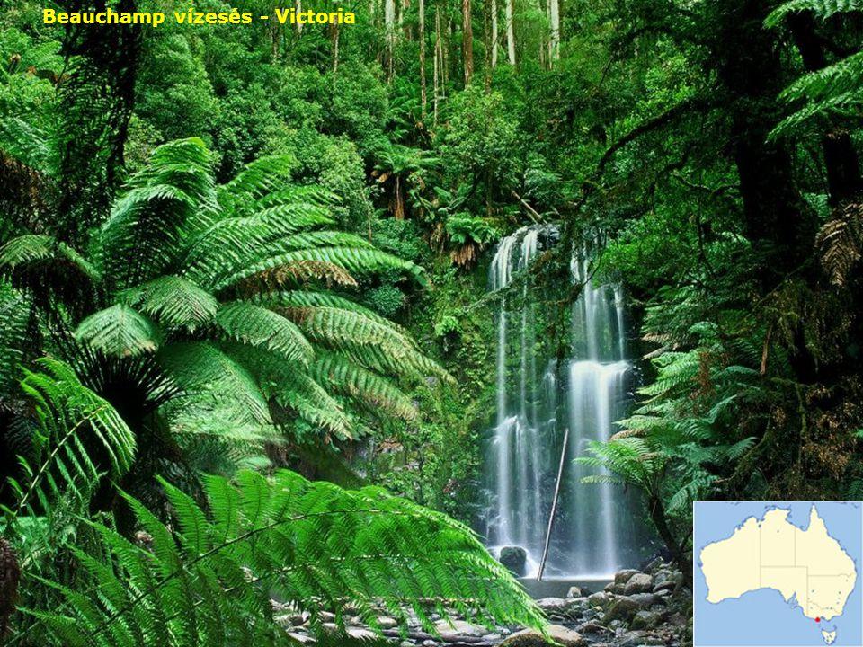 Beauchamp vízesés - Victoria