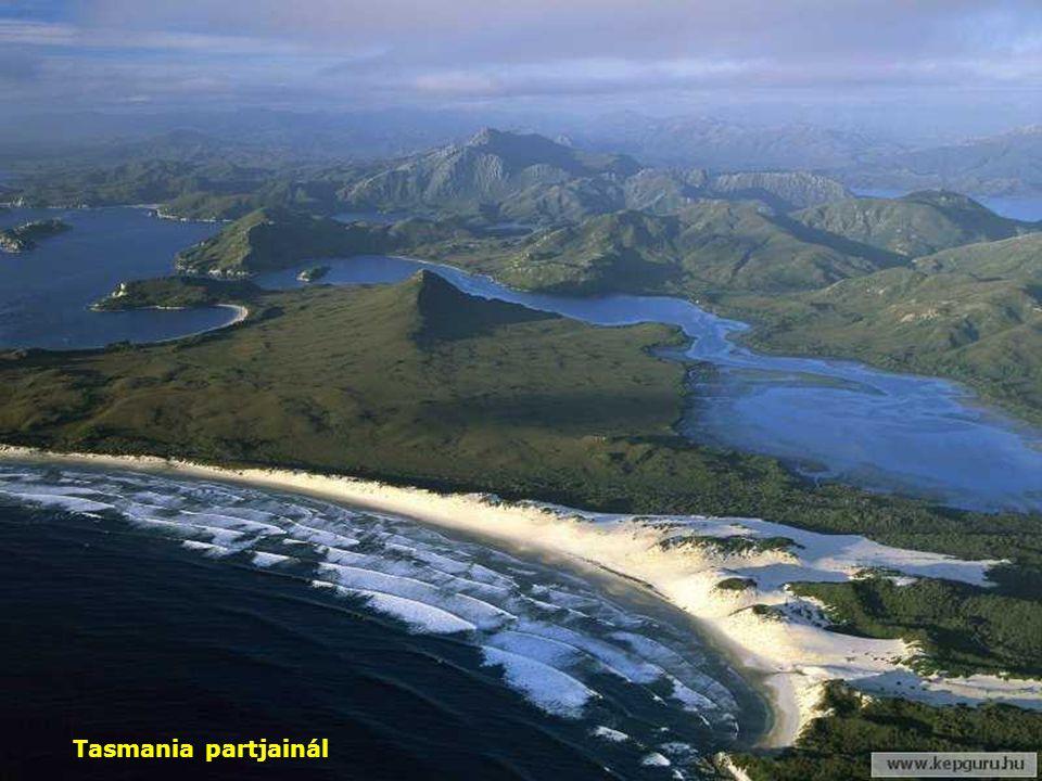 Tasmania partjainál
