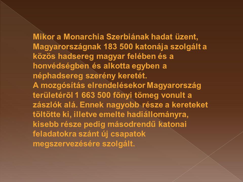 Mikor a Monarchia Szerbiának hadat üzent, Magyarországnak 183 500 katonája szolgált a közös hadsereg magyar felében és a honvédségben és alkotta egyben a néphadsereg szerény keretét.