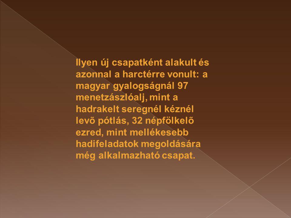 Ilyen új csapatként alakult és azonnal a harctérre vonult: a magyar gyalogságnál 97 menetzászlóalj, mint a hadrakelt seregnél kéznél levõ pótlás, 32 népfölkelõ ezred, mint mellékesebb hadifeladatok megoldására még alkalmazható csapat.