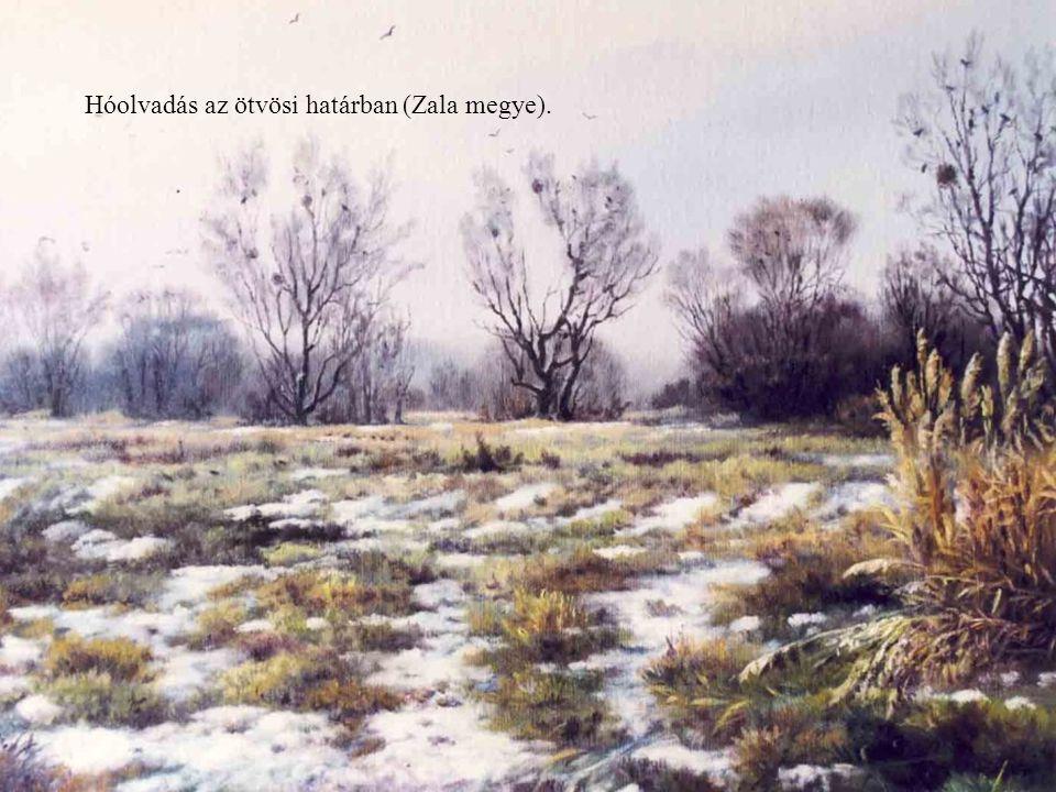 Hóolvadás az ötvösi határban (Zala megye).