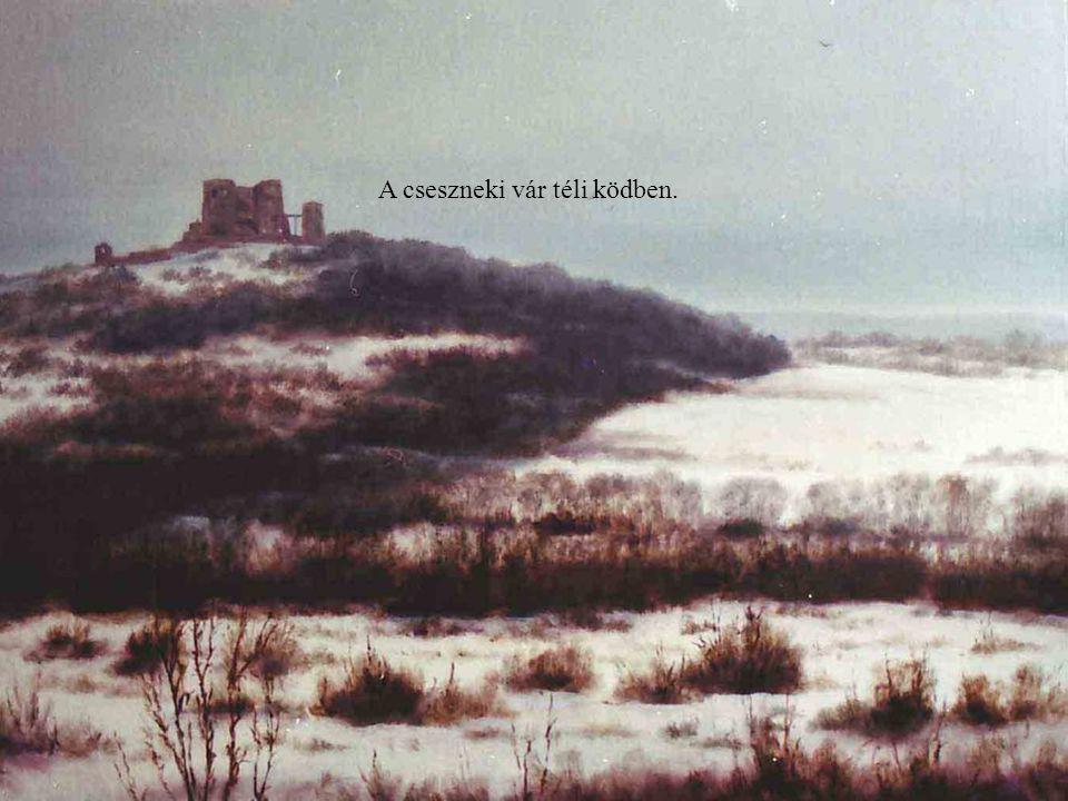 A cseszneki vár téli ködben.