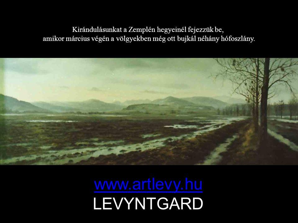 www.artlevy.hu LEVYNTGARD
