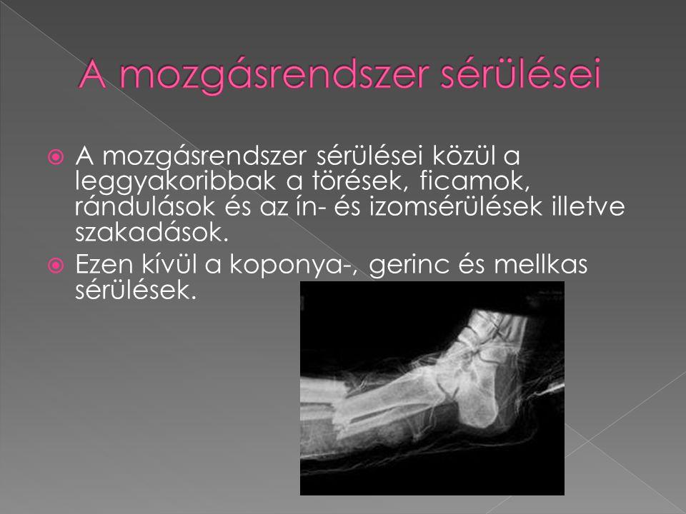 A mozgásrendszer sérülései