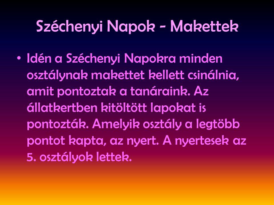 Széchenyi Napok - Makettek