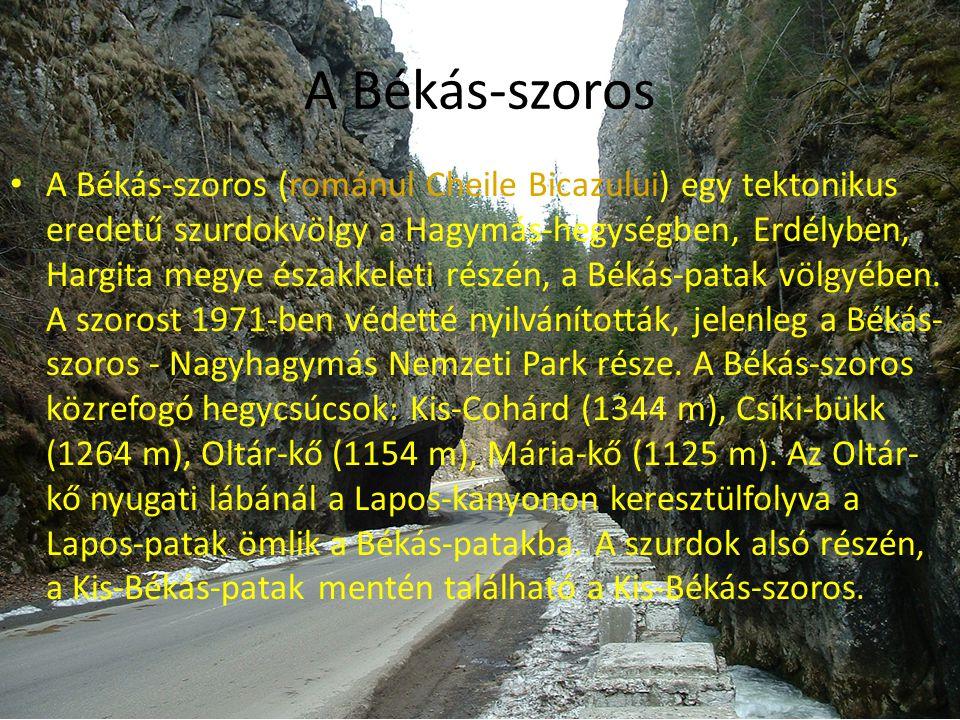 A Békás-szoros (románul Cheile Bicazului) egy tektonikus eredetű szurdokvölgy a Hagymás-hegységben, Erdélyben, Hargita megye északkeleti részén, a Békás-patak völgyében. A szorost 1971-ben védetté nyilvánították, jelenleg a Békás-szoros - Nagyhagymás Nemzeti Park része. A Békás-szoros közrefogó hegycsúcsok: Kis-Cohárd (1344 m), Csíki-bükk (1264 m), Oltár-kő (1154 m), Mária-kő (1125 m). Az Oltár-kő nyugati lábánál a Lapos-kanyonon keresztülfolyva a Lapos-patak ömlik a Békás-patakba. A szurdok alsó részén, a Kis-Békás-patak mentén található a Kis-Békás-szoros.