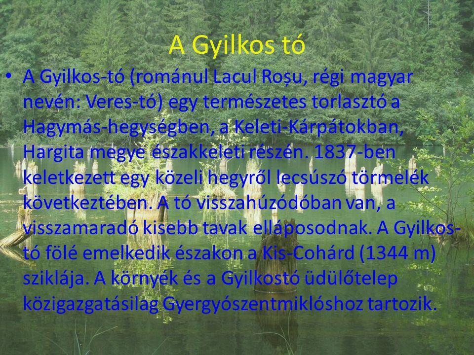 A Gyilkos-tó (románul Lacul Roșu, régi magyar nevén: Veres-tó) egy természetes torlasztó a Hagymás-hegységben, a Keleti-Kárpátokban, Hargita megye északkeleti részén. 1837-ben keletkezett egy közeli hegyről lecsúszó törmelék következtében. A tó visszahúzódóban van, a visszamaradó kisebb tavak elláposodnak. A Gyilkos-tó fölé emelkedik északon a Kis-Cohárd (1344 m) sziklája. A környék és a Gyilkostó üdülőtelep közigazgatásilag Gyergyószentmiklóshoz tartozik.