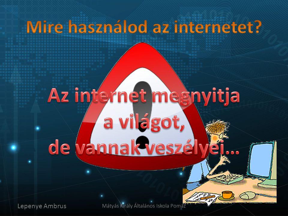 Mire használod az internetet