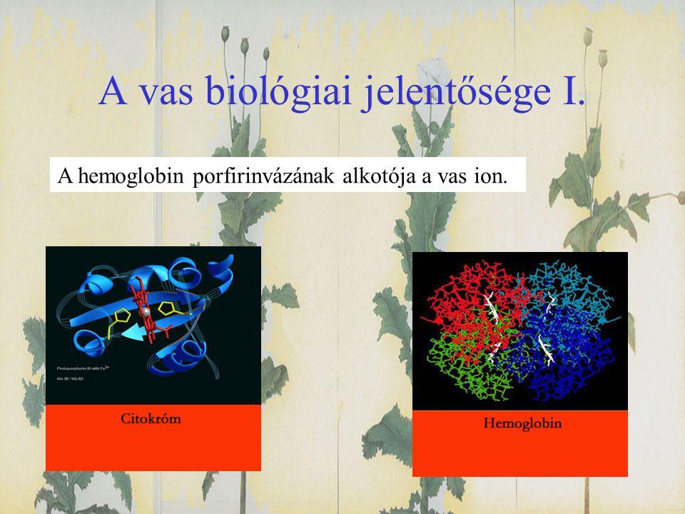 A vas biológiai jelentősége I.