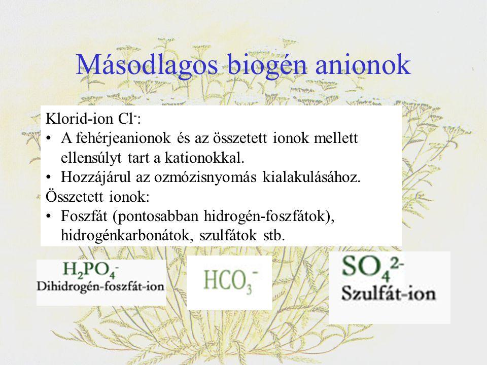 Másodlagos biogén anionok