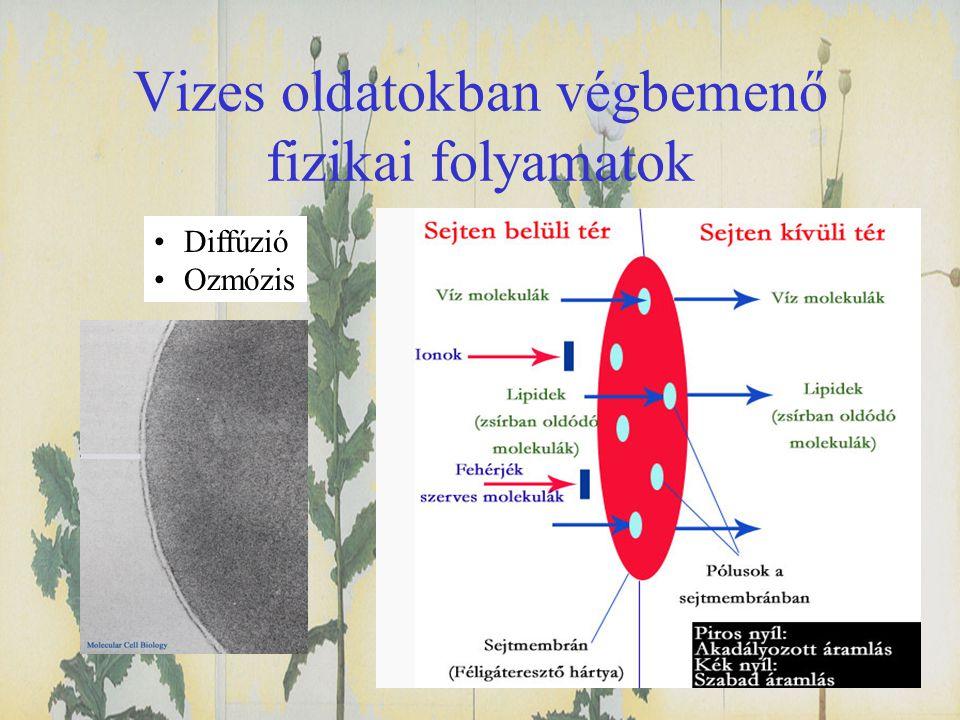 Vizes oldatokban végbemenő fizikai folyamatok