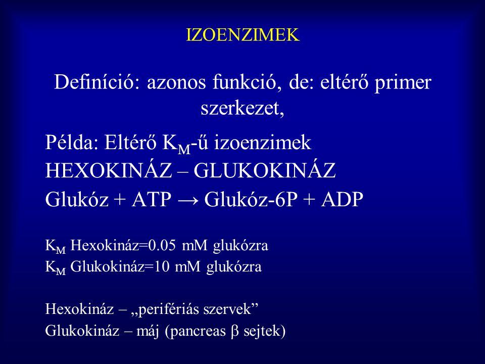 IZOENZIMEK Definíció: azonos funkció, de: eltérő primer szerkezet,
