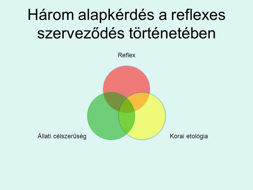Három alapkérdés a reflexes szerveződés történetében