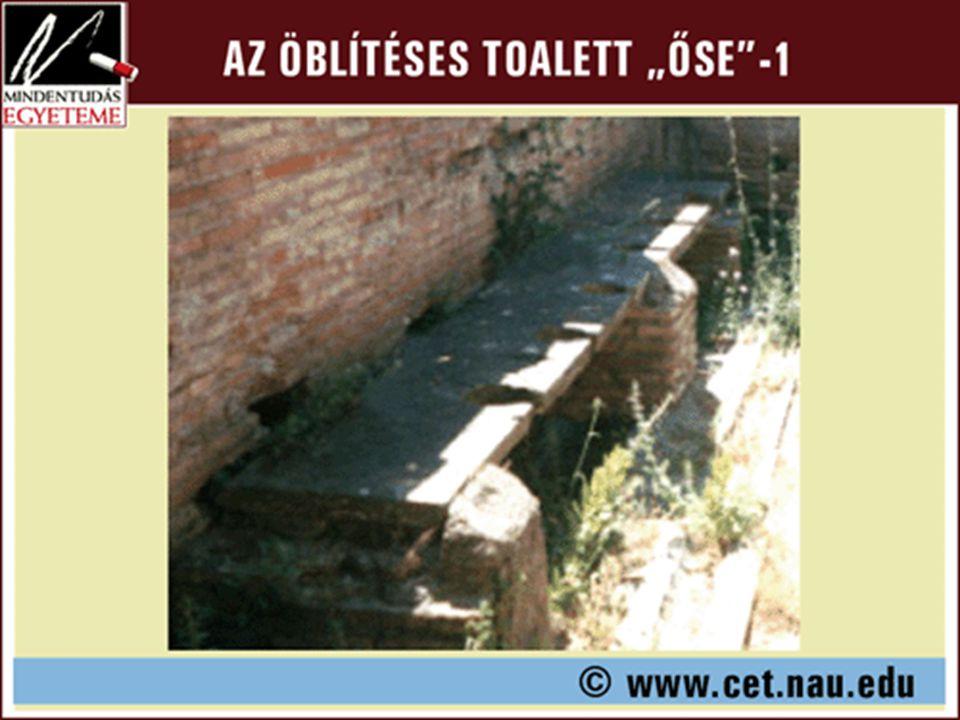 A civilizáció egyik legjelentősebb innovációja, az öblítéses toalett