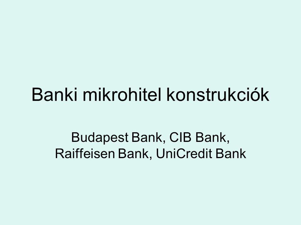 Banki mikrohitel konstrukciók