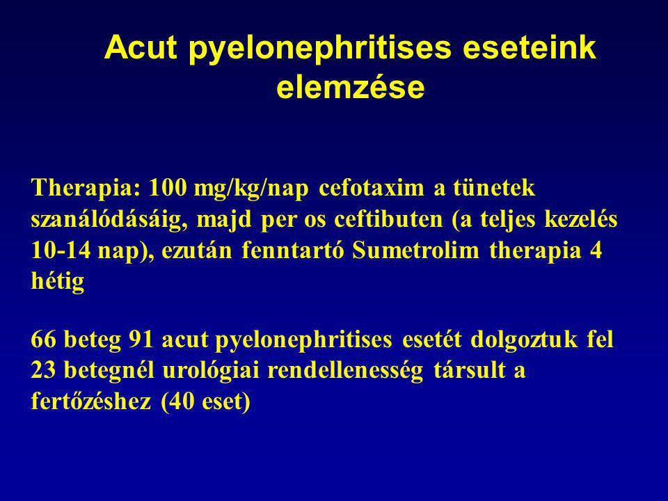 Acut pyelonephritises eseteink elemzése