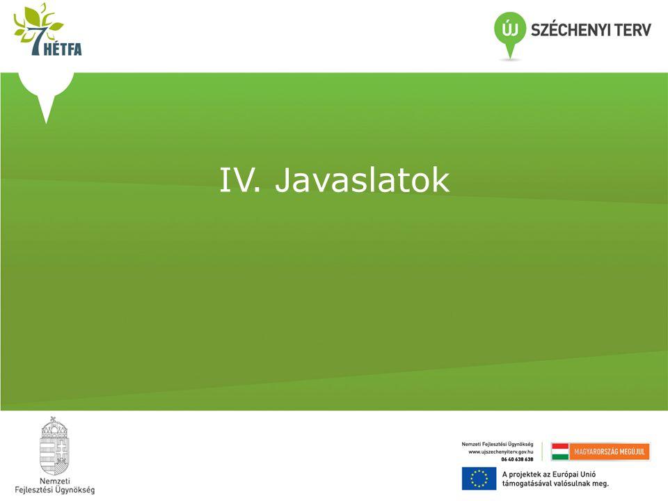 IV. Javaslatok