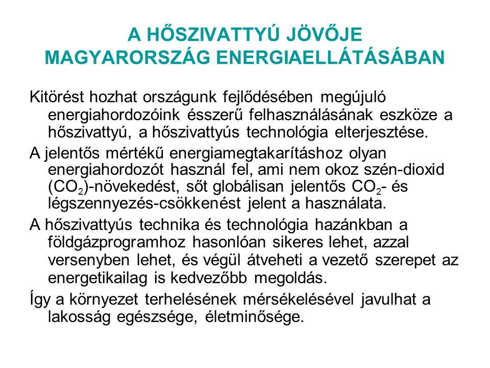 A HŐSZIVATTYÚ JÖVŐJE MAGYARORSZÁG ENERGIAELLÁTÁSÁBAN