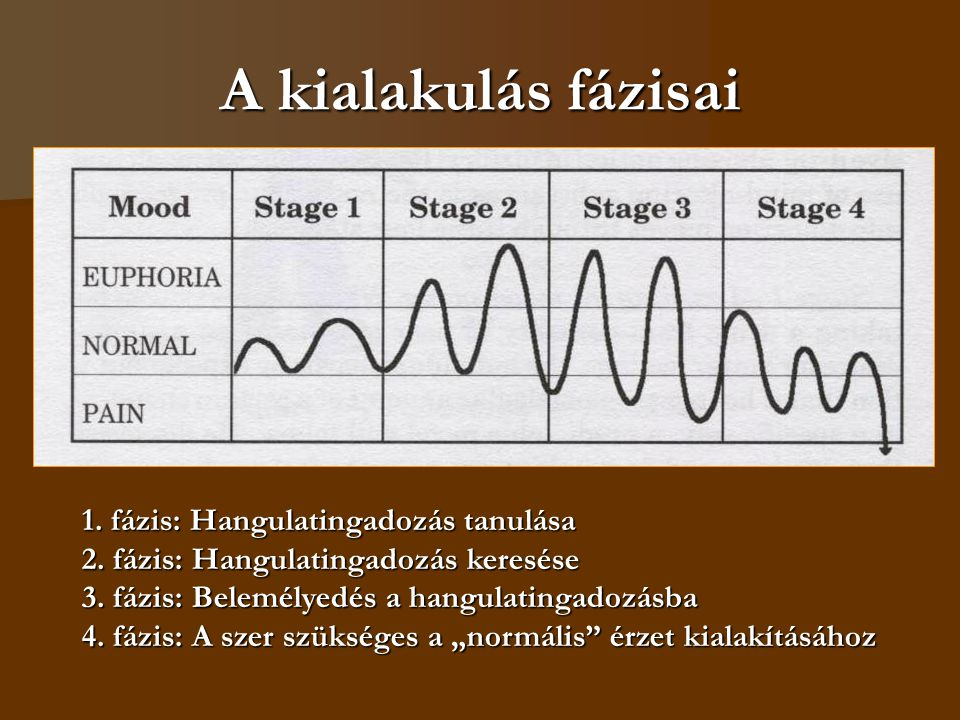 A kialakulás fázisai 1. fázis: Hangulatingadozás tanulása