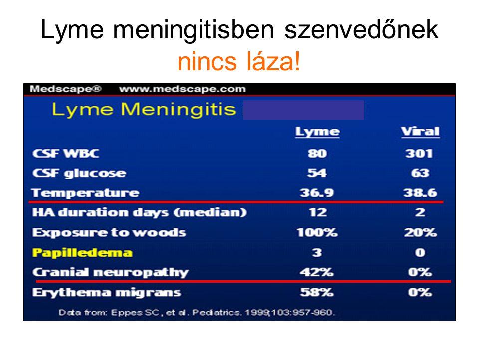 Lyme meningitisben szenvedőnek nincs láza!