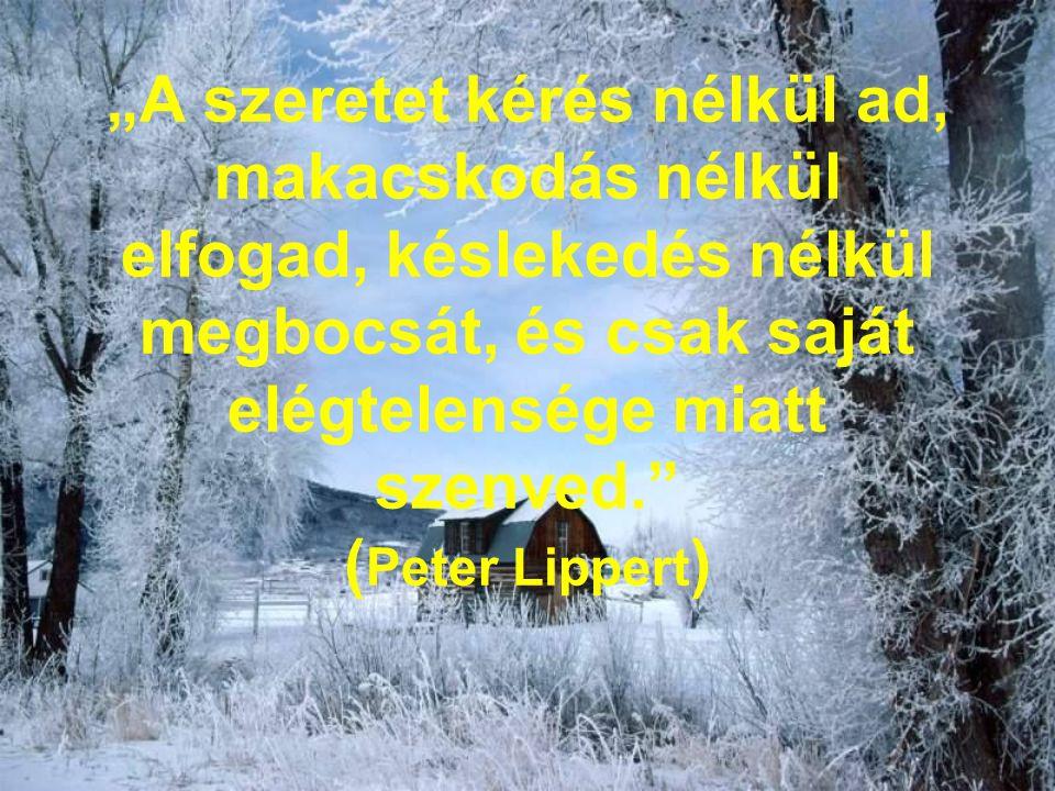 """""""A szeretet kérés nélkül ad, makacskodás nélkül elfogad, késlekedés nélkül megbocsát, és csak saját elégtelensége miatt szenved. (Peter Lippert)"""