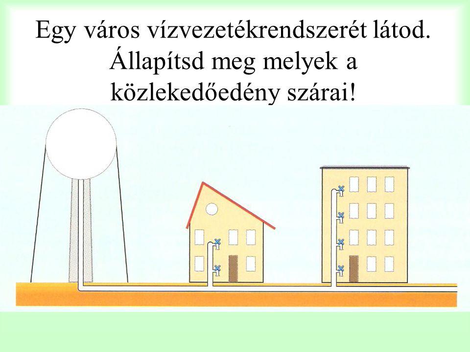 Egy város vízvezetékrendszerét látod