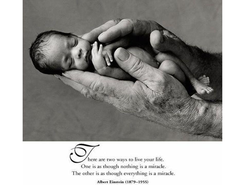 Life is a Miracle Az élet ajándéka…