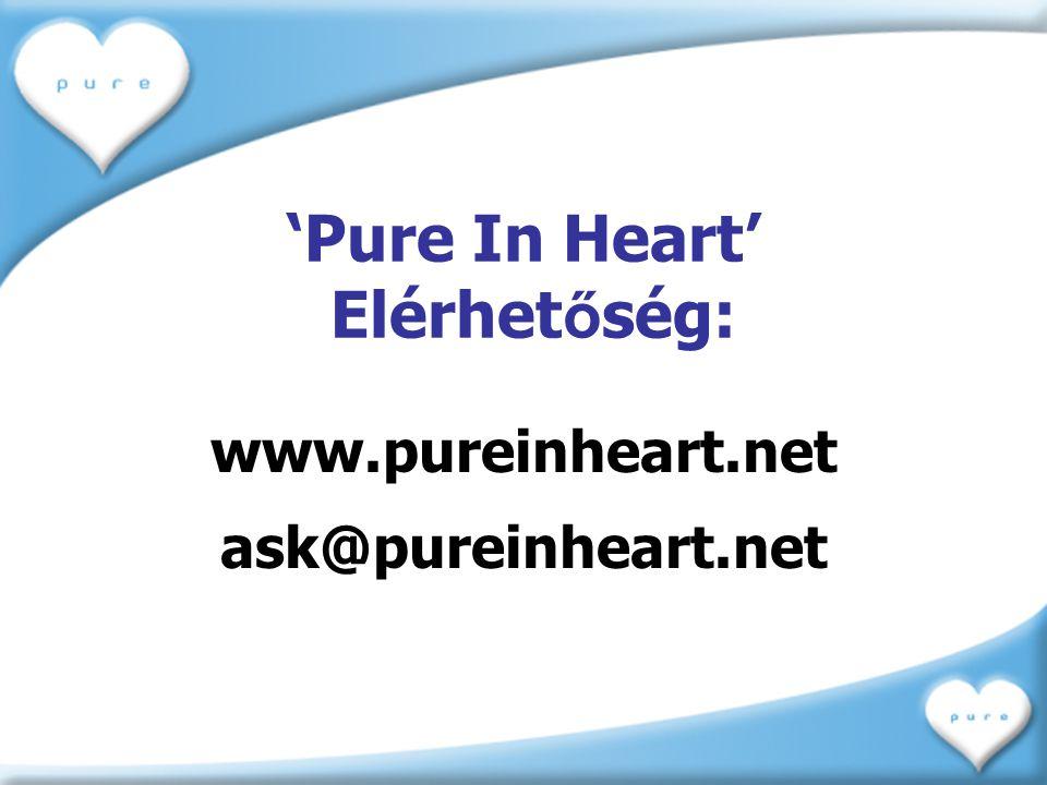 'Pure In Heart' Elérhetőség: