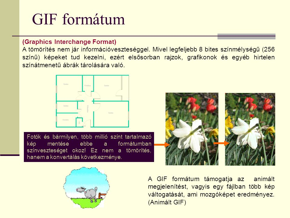 GIF formátum (Graphics Interchange Format)