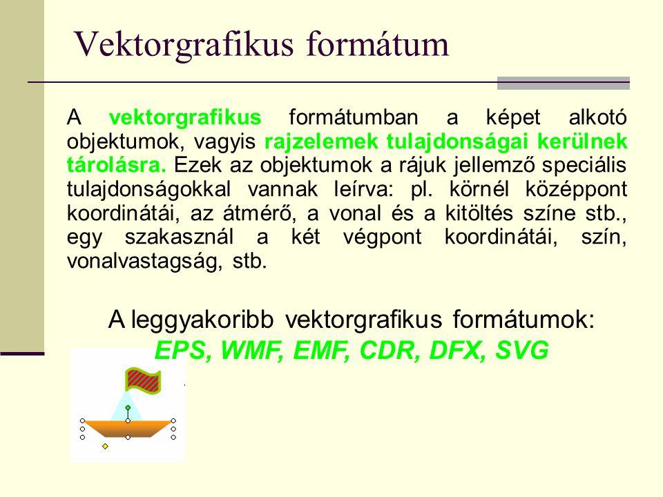 Vektorgrafikus formátum