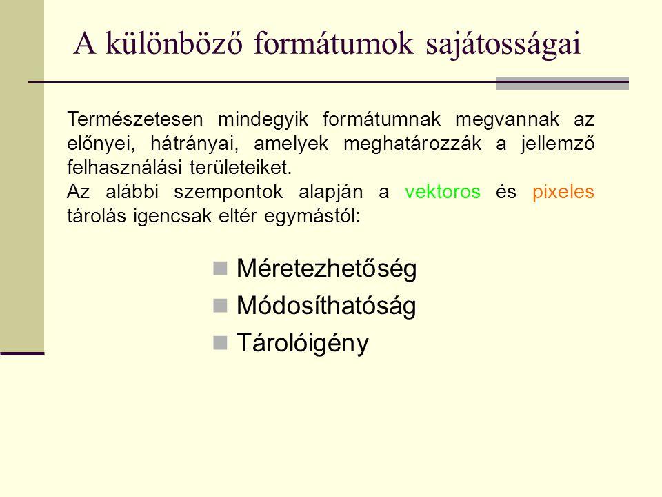 A különböző formátumok sajátosságai