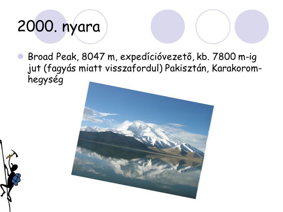 2000. nyara Broad Peak, 8047 m, expedícióvezető, kb.