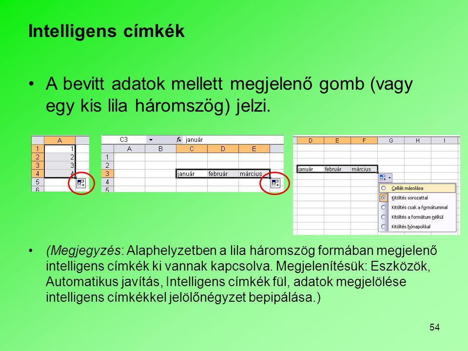 Intelligens címkék A bevitt adatok mellett megjelenő gomb (vagy egy kis lila háromszög) jelzi.
