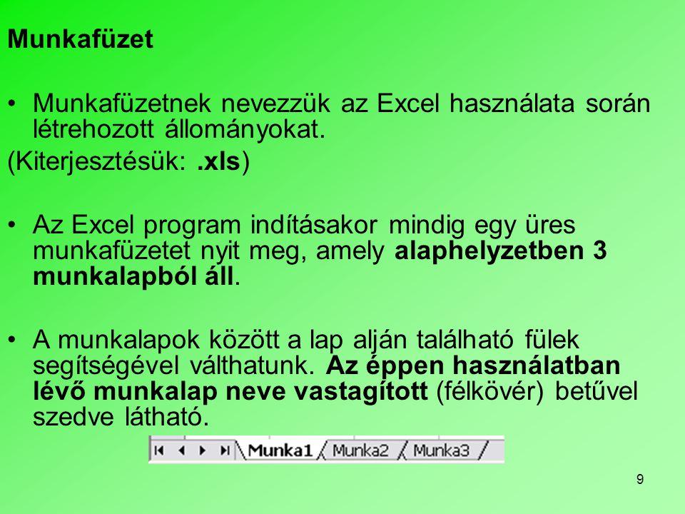 Munkafüzet Munkafüzetnek nevezzük az Excel használata során létrehozott állományokat. (Kiterjesztésük: .xls)