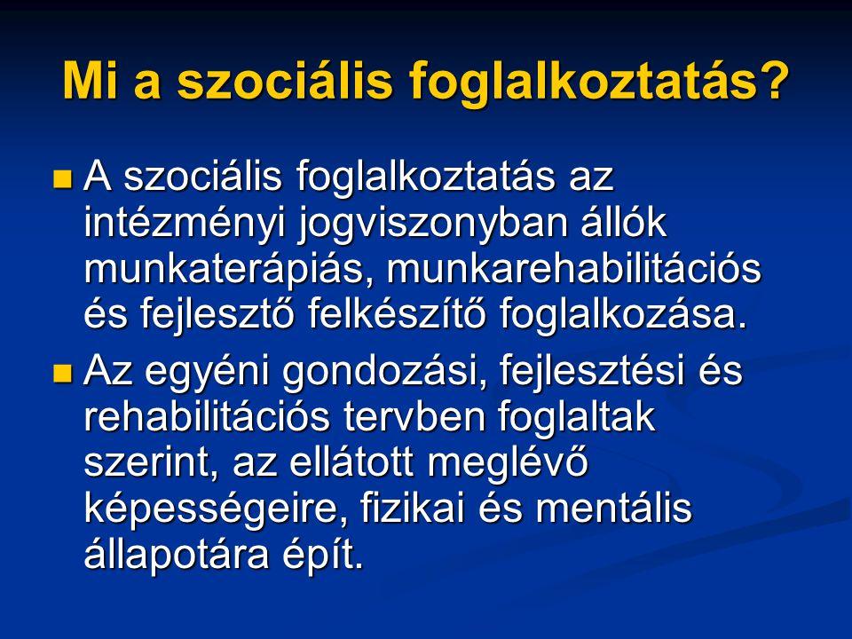 Mi a szociális foglalkoztatás