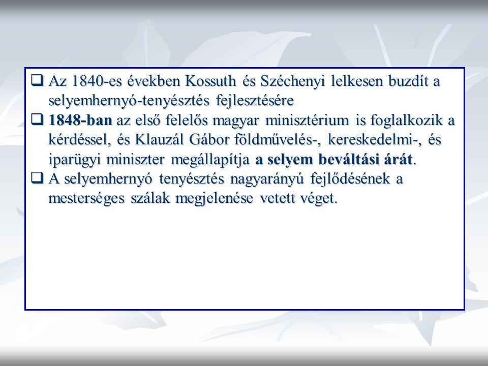 Az 1840-es években Kossuth és Széchenyi lelkesen buzdít a selyemhernyó-tenyésztés fejlesztésére