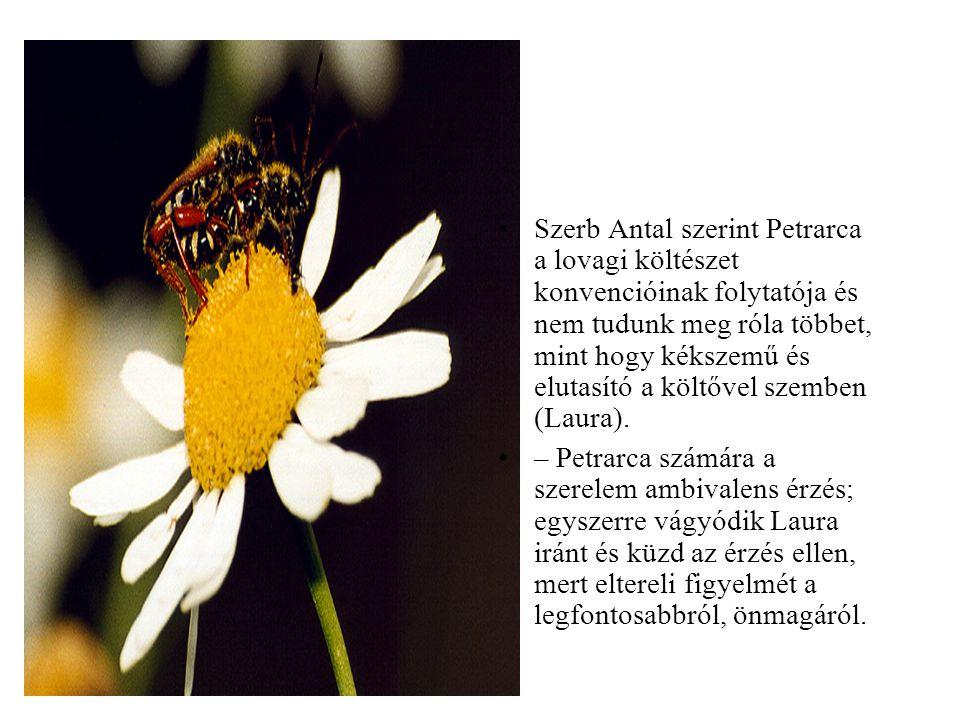 Szerb Antal szerint Petrarca a lovagi költészet konvencióinak folytatója és nem tudunk meg róla többet, mint hogy kékszemű és elutasító a költővel szemben (Laura).