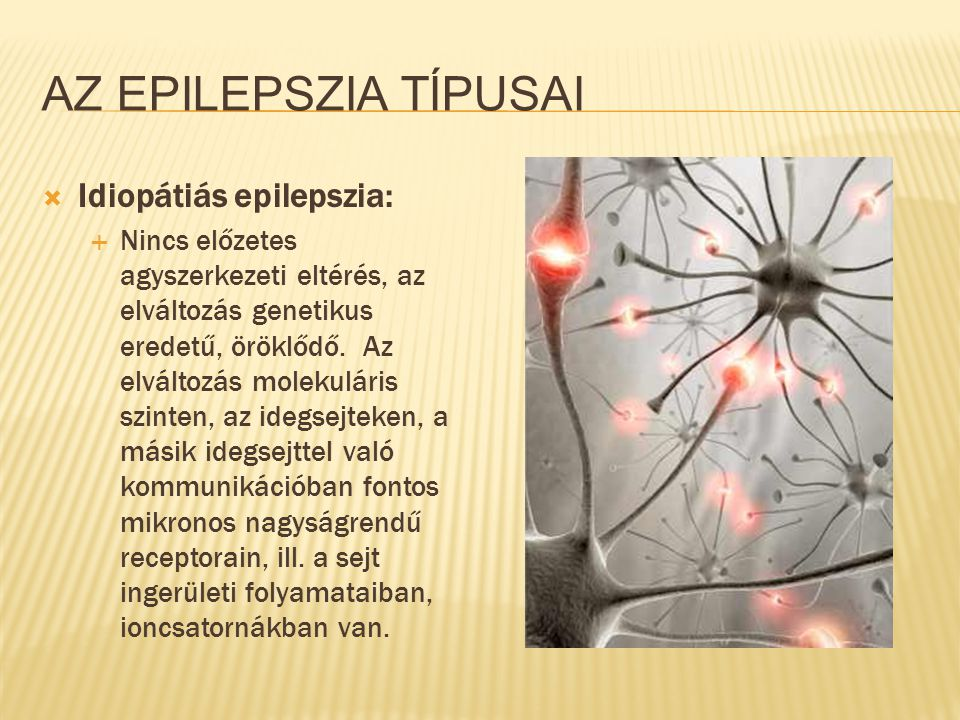 Az epilepszia típusai Idiopátiás epilepszia: