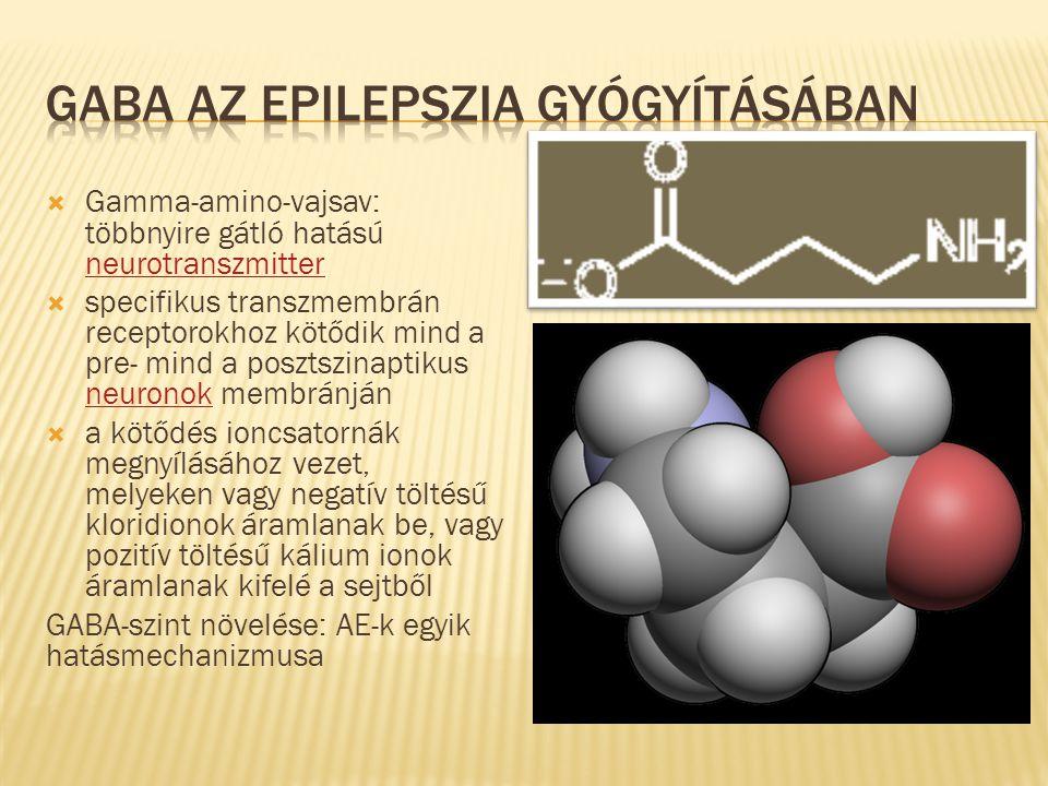 GABA az epilepszia gyógyításában