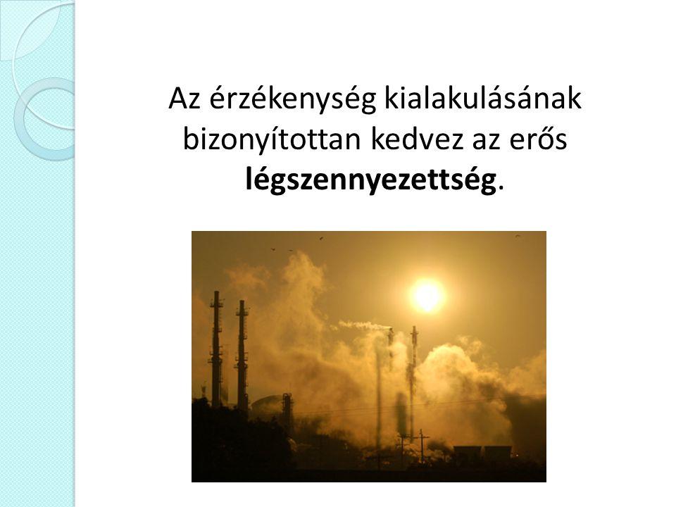 Az érzékenység kialakulásának bizonyítottan kedvez az erős légszennyezettség.
