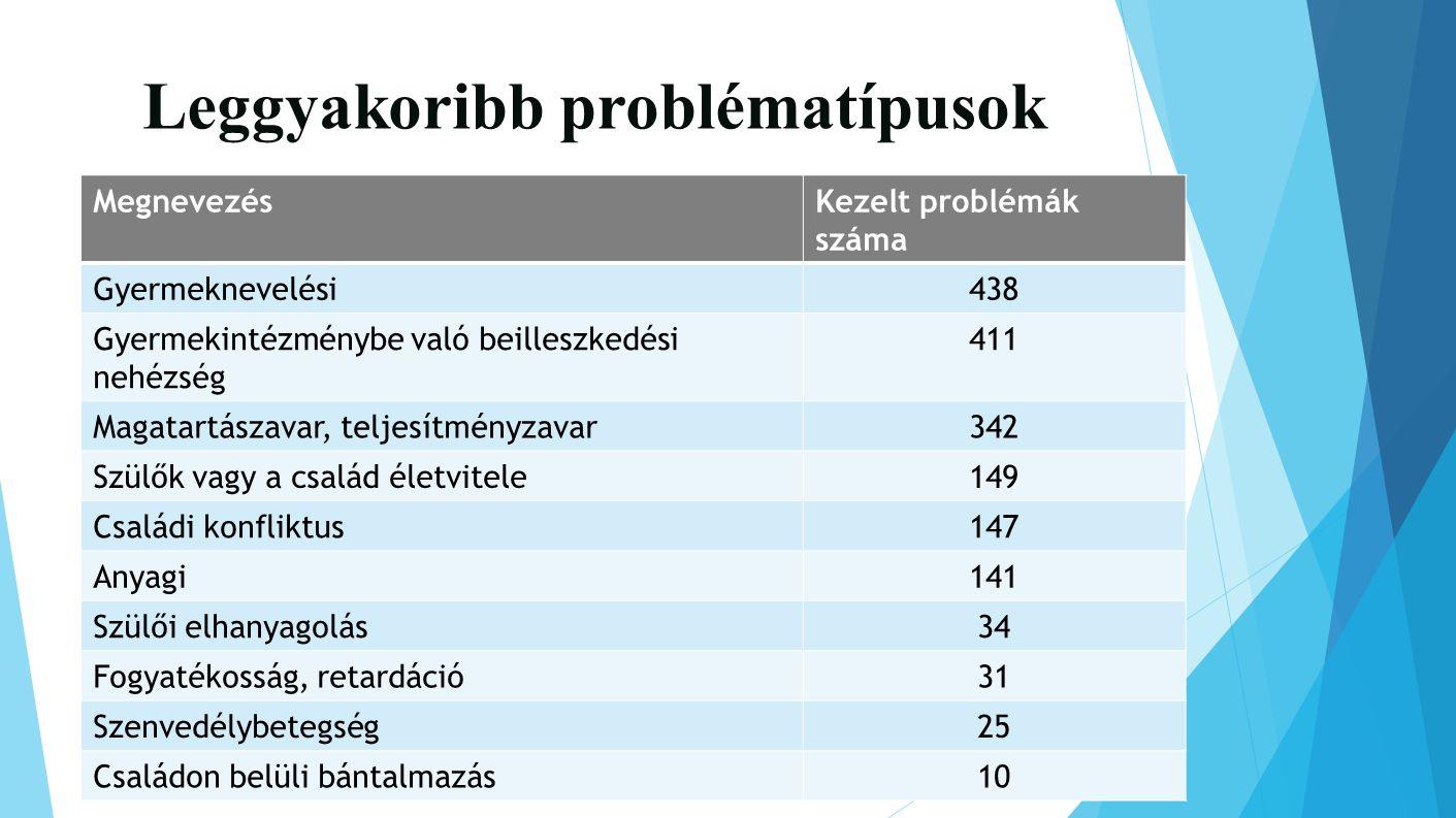 Leggyakoribb problématípusok