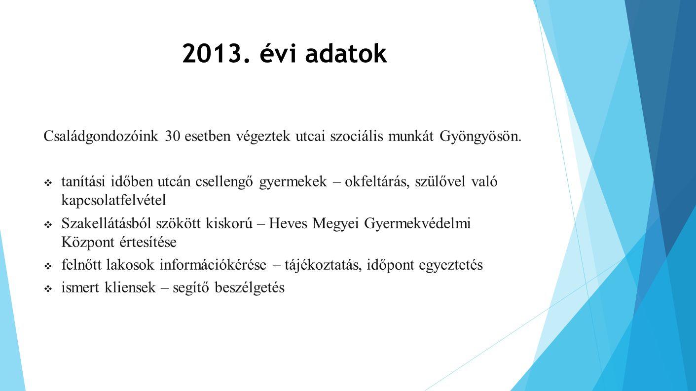 2013. évi adatok Családgondozóink 30 esetben végeztek utcai szociális munkát Gyöngyösön.