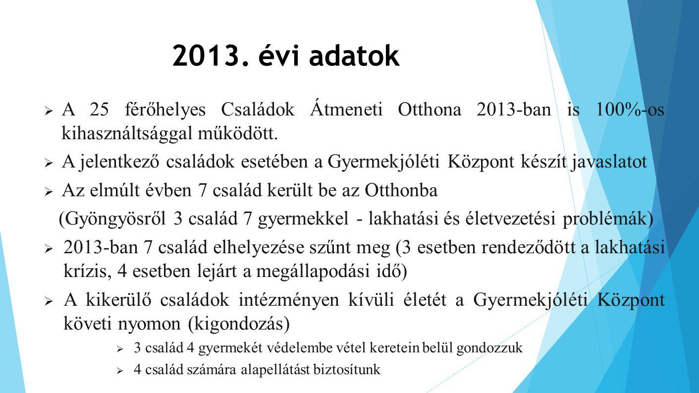 2013. évi adatok A 25 férőhelyes Családok Átmeneti Otthona 2013-ban is 100%-os kihasználtsággal működött.