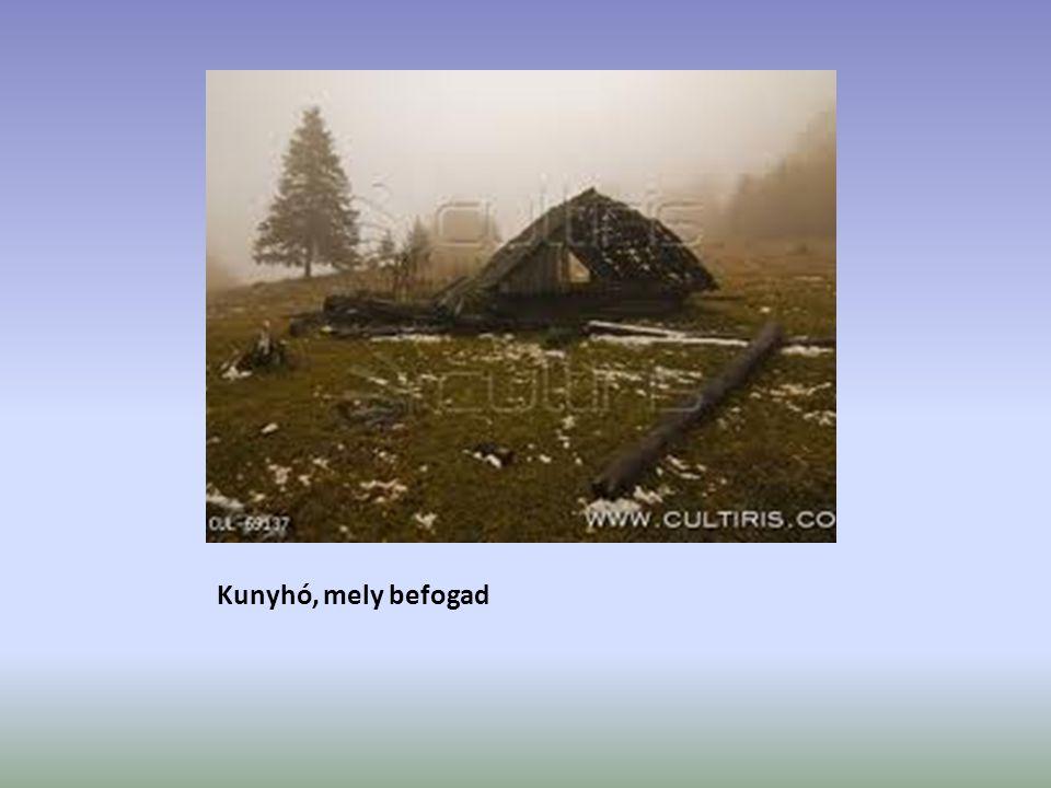 Kunyhó, mely befogad