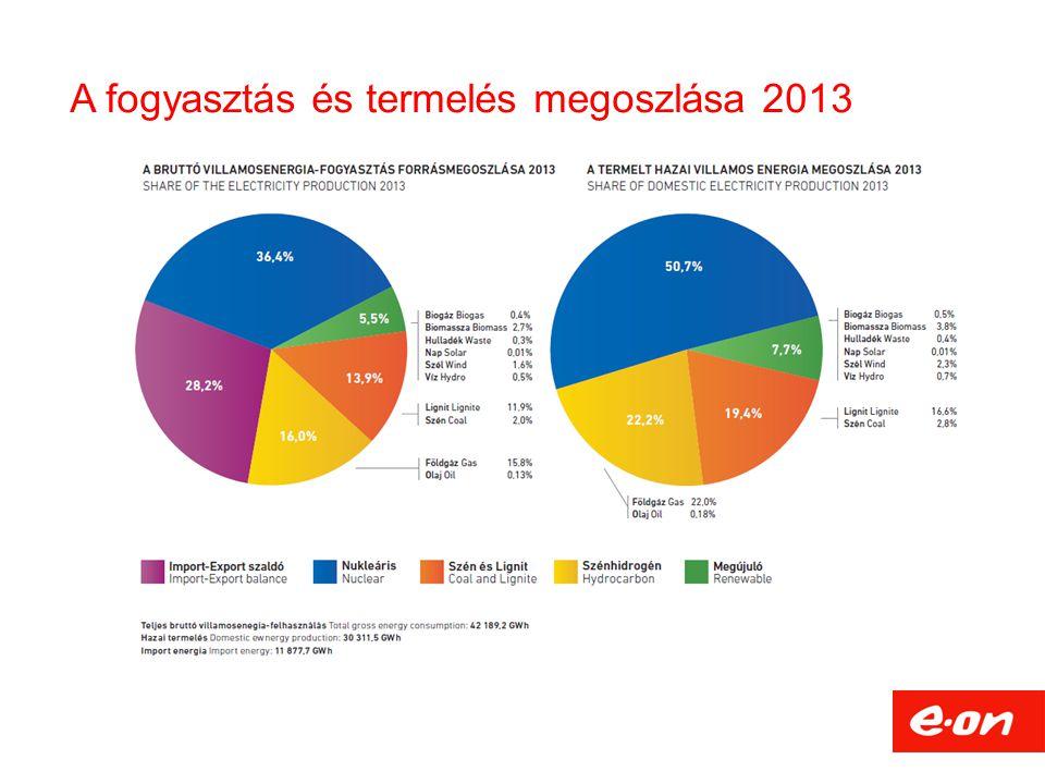 A fogyasztás és termelés megoszlása 2013