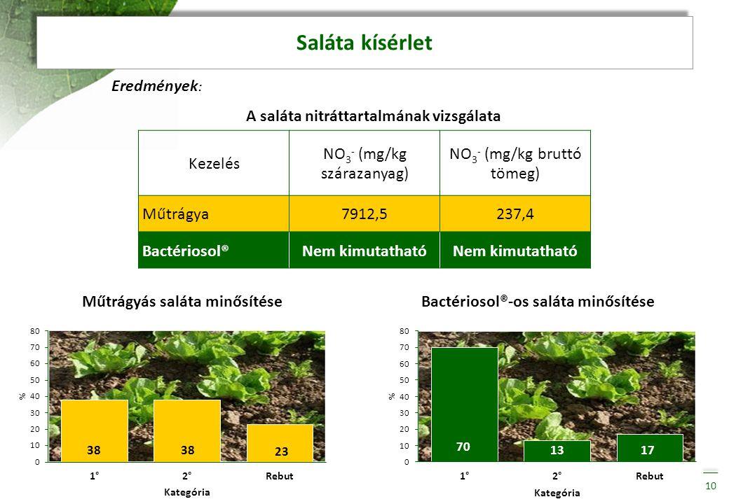 Saláta kísérlet Eredmények: Kezelés NO3- (mg/kg szárazanyag)