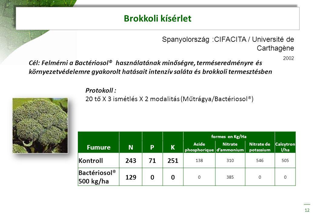 Brokkoli kísérlet Spanyolország :CIFACITA / Université de Carthagène
