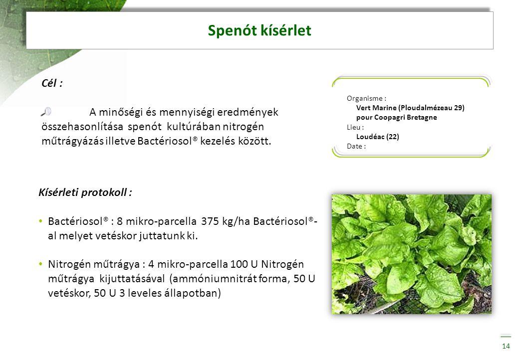 Spenót kísérlet Organisme : Vert Marine (Ploudalmézeau 29) pour Coopagri Bretagne. Lieu : Loudéac (22)